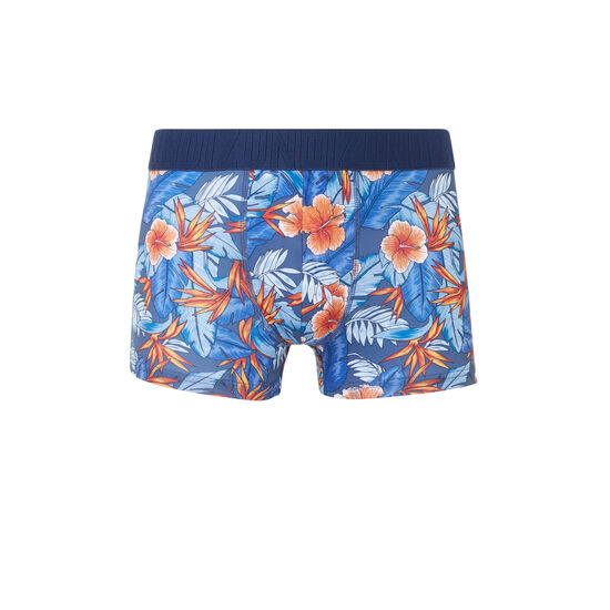 Boxer bleu caribbeaniz;