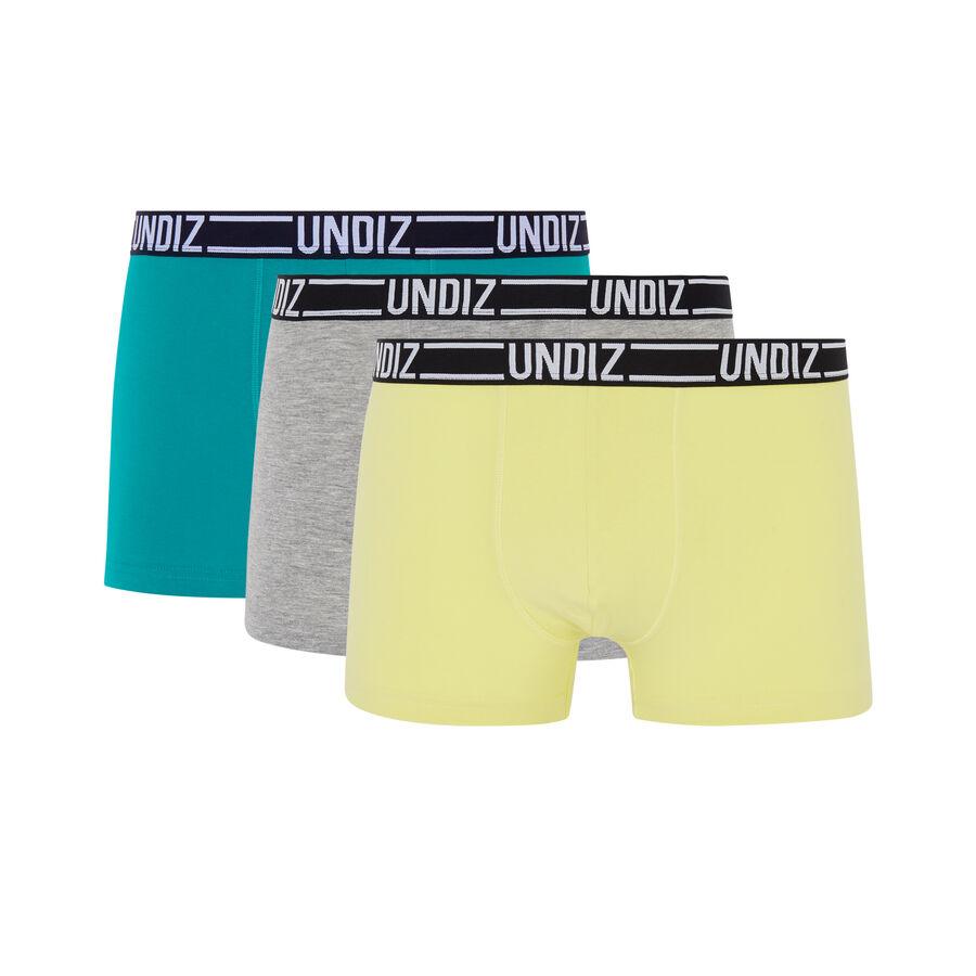 Lot de boxers bleuiz;${refinementColor}