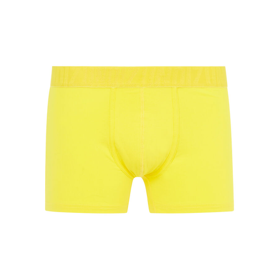 Boxer jaune oreliz;