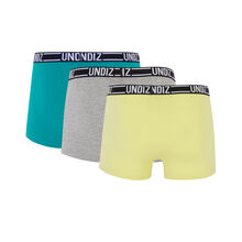 Lot de boxers bleuiz green.