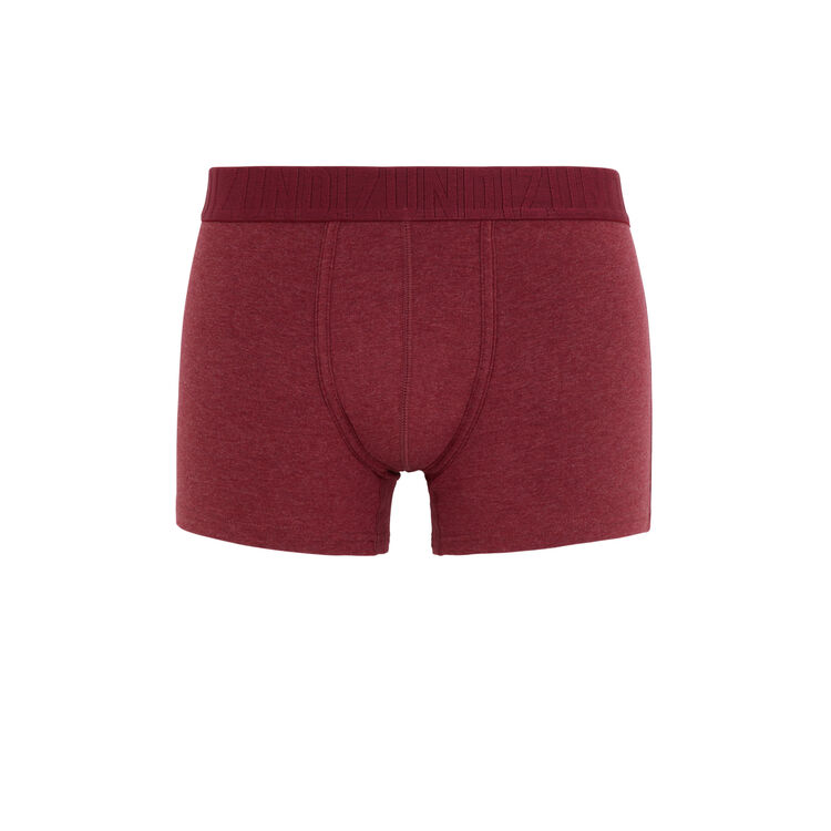 Boxer bordeaux oreliz rouge.