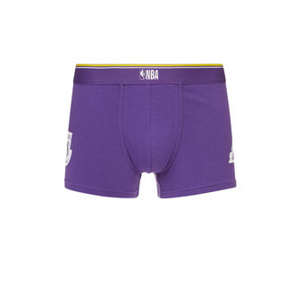 Boxer violet thelakeriz purple.