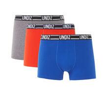 Lot de trois boxers bleuiz grey.