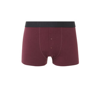 Boxer bordeaux camoiz red.