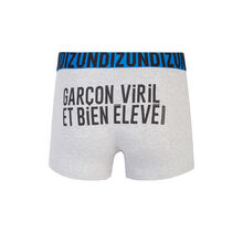 Viriliz grey boxer shorts grey.